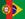 translation-portuguese